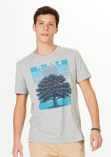 Camiseta Masculina Regular Com Estampa | Hering
